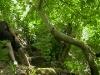tarsus-avcilar-kulubu-2012-kano.jpg (23)