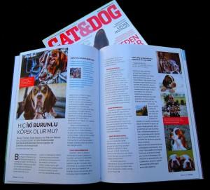 tarsus catalburun cat&dog dergisi