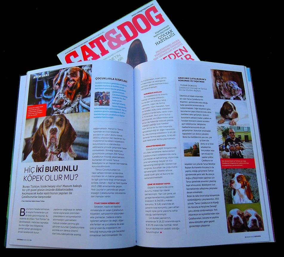 Çatalburunlar, Ulusal Pet Dergisi Cat&Dog 'ta ayın Irkı