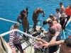 tekne gezisi