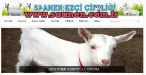 Saanen keçi çiftliği, www.saanen.com.tr